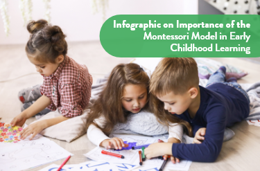 Little Wonders Montessori Infographic Early childhood learning